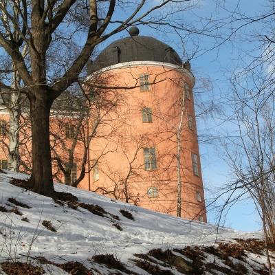 Hjälp med hemsida Uppsala